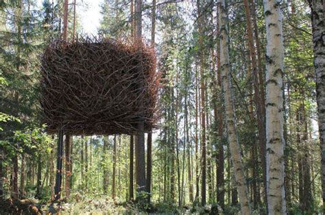 tree houses around the world the most amazing treehouses 17 pics
