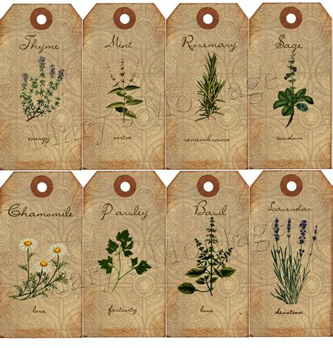 printable herb labels 5 best images of printable vintage herb labels spice and