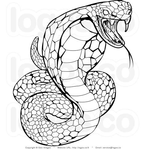 free coloring page of a snake free coloring pages of king cobra drawing