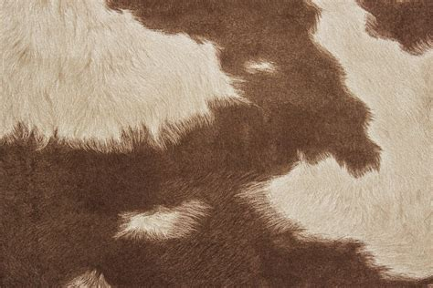 Animal Print Fabric For Upholstery Suede Cowhide Fabric Brown White The Fabric Mill