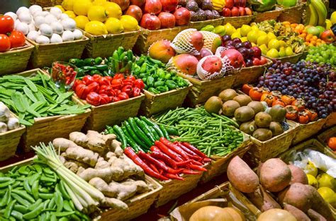 tipos de alimentos transgenicos biolog 237 a alimentos org 225 nicos vs alimentos transg 233 nicos