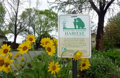 backyard habitat certification create a certified wildlife habitat