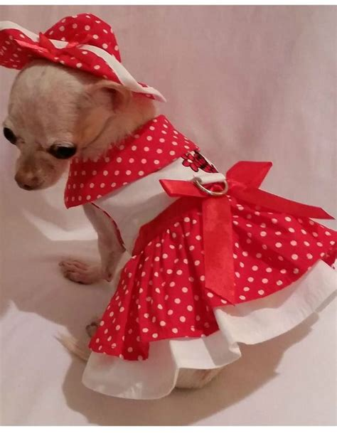 puppy dresses 25 best ideas about dresses on puppy clothes and dresses