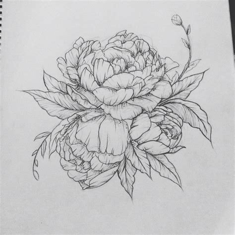 Inspect Sketches B And D by Peony Contact Me For Custom Drawings