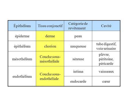 Tissu De Revetement by Les Tissus A Les 233 Pith 233 Liums 201 Pith 233 Liums De Rev 234 Tement