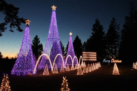 best way to set up christmas lights awesome light displays in seattle