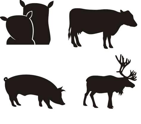 imagenes raras para descargar im 225 genes gratis para descargar cerdos caballos foto
