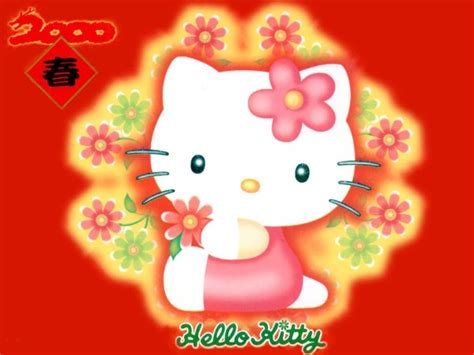 sanrio new year wallpaper 50 hello wallpaper to make you feel aww