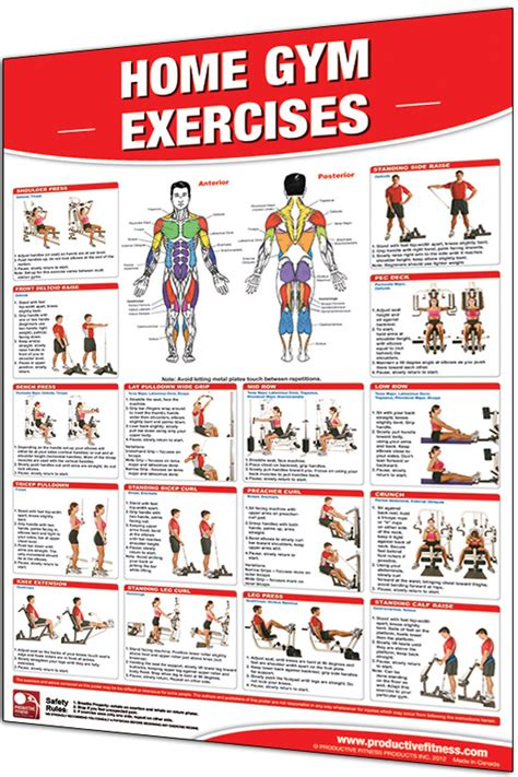 laminated wall chart fitness poster home exercises