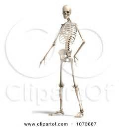 Skeleton Pose Construction clipart 3d human skeleton posing royalty free cgi