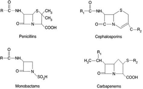 Obat Quinobiotic Panotile Cipro Nebenwirkungen Pille