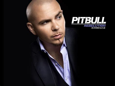 biography of pitbull in spanish music is life amy m s creative mind