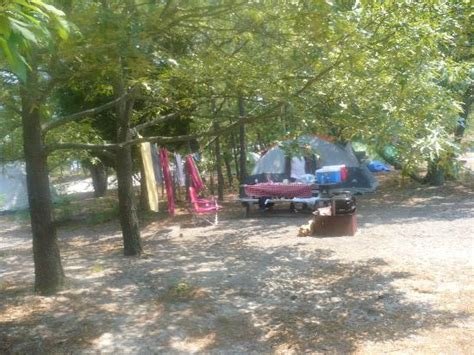 Delaware Cgrounds With Cabins by Picnic Table Picture Of Cape Henlopen State Park Cground Lewes Tripadvisor