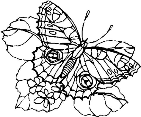 detailed coloring pages freecoloring4u com