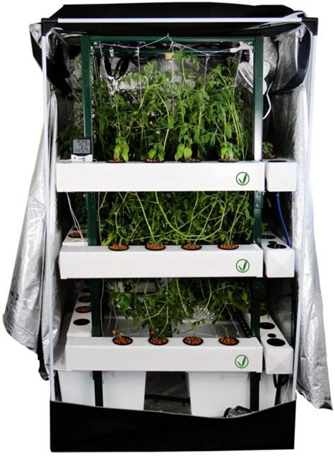 Setting Up A Closet Grow Room by 17 Best Images About Marijuana Grow Tents On Grow Tent Led Grow And Hydroponic Systems