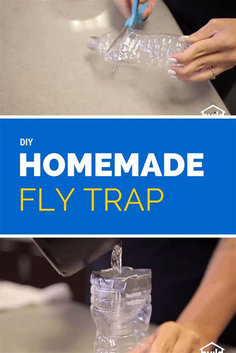 What Detox Shoo Works by 17 Best Images About Fly Traps To Try On