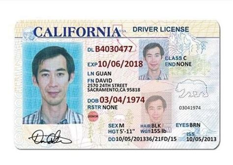 ca id card template 33 best driver license templates photoshop file images on