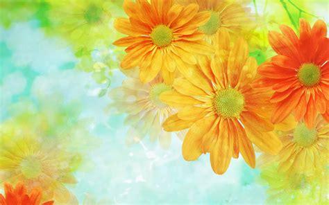 Wallpaper Flower Art | wallpapers flower art wallpapers