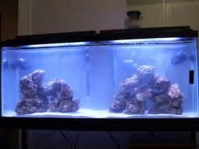 55 Gallon Saltwater Aquarium for Sale in Louisville, Kentucky