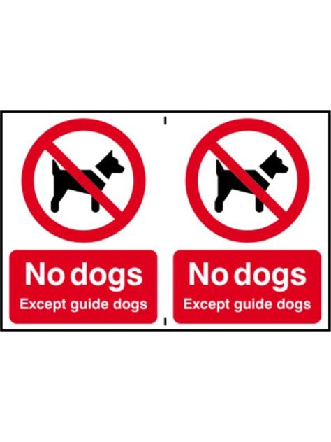 no smoking sign dog no dogs except guide dogs sign hall fast http www