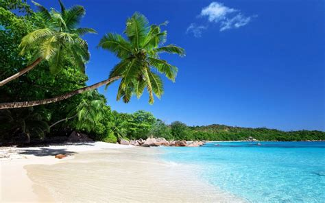 most beautiful beaches in the world top 10 most beautiful beaches in the world