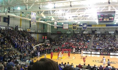 s section stony brook sefcu arena section 200 row s seat 10 albany great danes