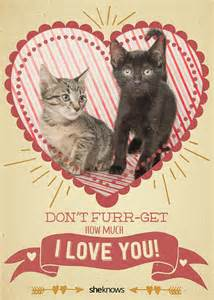 12 cat s day cards that will make you aww