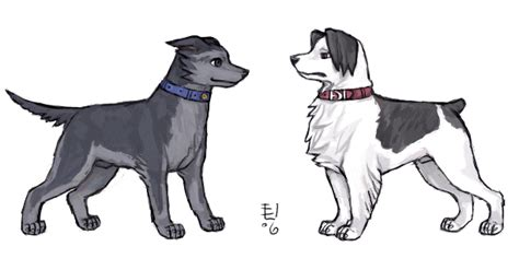 ace for dogs ace dogs by emlan on deviantart