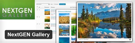 avada theme nextgen gallery 7 of the best free gallery plugins for wordpress themetrust