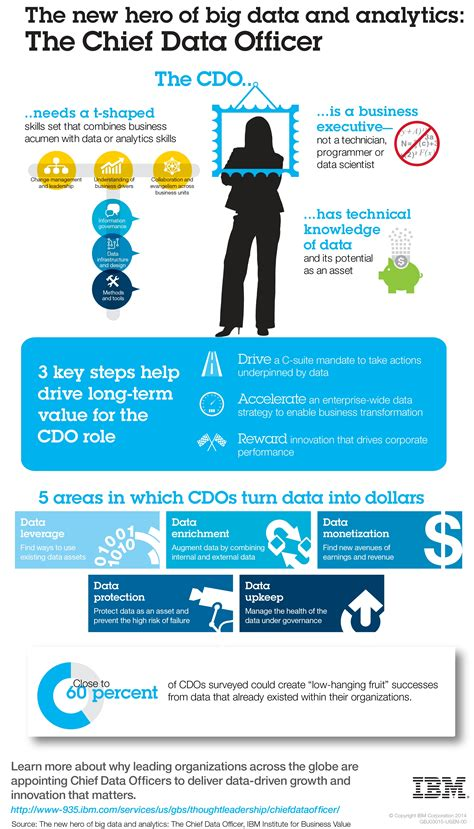 Chief Data Officer by What Chief Data Officers Do Infographic What S The Big
