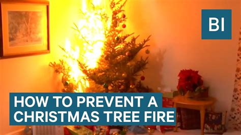 how to stop my live christmas tree from lening how to prevent a tree this year