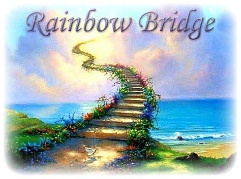 rainbow bridge in memory of