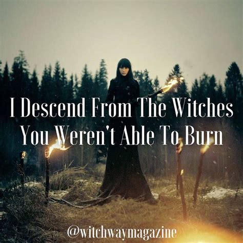 Witch Meme - 45 best witch memes images on pinterest wicked bruges