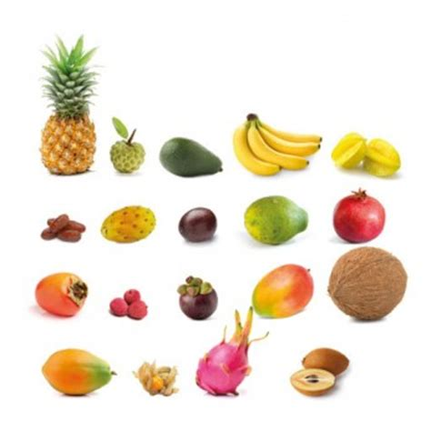 d fruit fruits exotiques carte d identit 233 interfel les