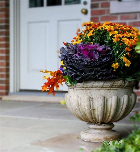 Fall Planter Ideas by 25 Best Ideas About Fall Planters On Front