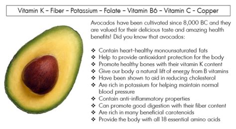 Benefit 10 So Simple A Cavewoman Could Use It by Avocado Health Benefits For Babies Pregnancy Liver Hair