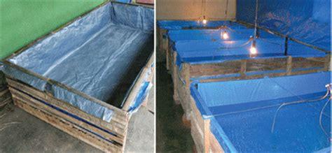 rumah hijau organik membuat kolam ikan terpal