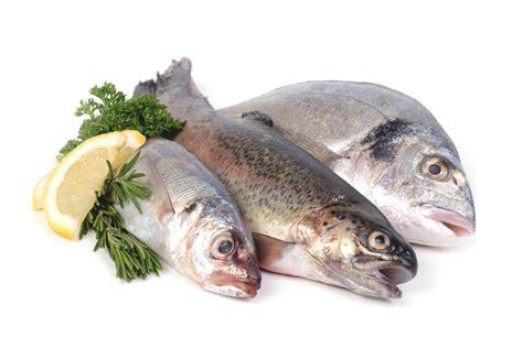 recetas cocina pescado pescados recetas y consejos