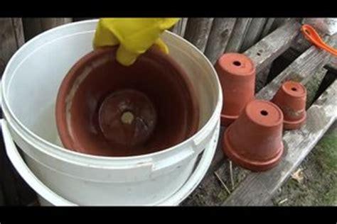pvc boden geruch entfernen tont 246 pfe reinigen so werden blument 246 pfe sauber