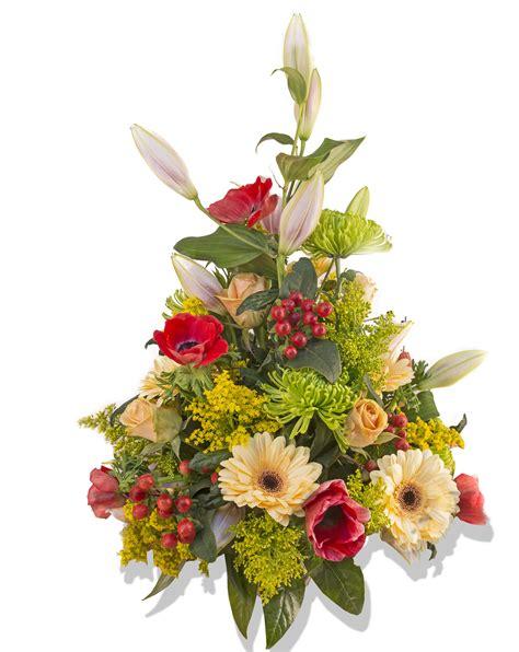 design flower center free images petal plants art gerbera floristry