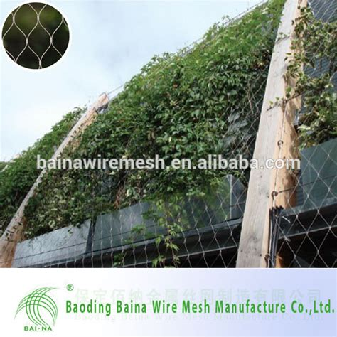 climbing plant mesh stainless steel wire rope mesh net for green wall climbing