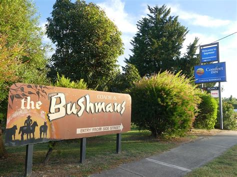 comfort inn bushmans comfort inn coach bushmans motel sydney