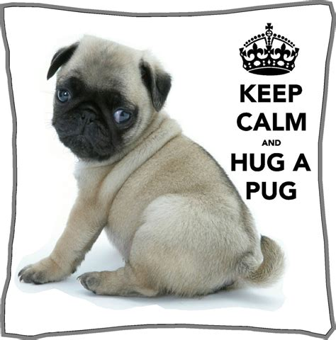 how to buy a pug keep calm and hug a pug cushion cover personalised 18 quot x 18 quot gift mothers day ebay