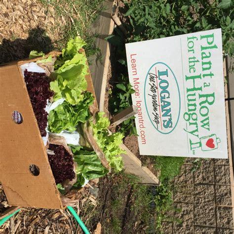gardenia delivery garden delivery fb e1465566910193 960 215 960 zerowastechurch org