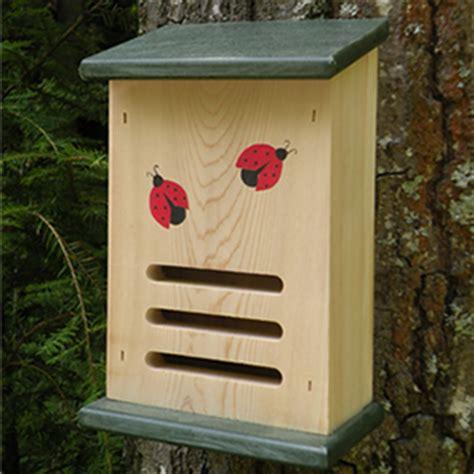 ladybug house duncraft com recycled ladybug house