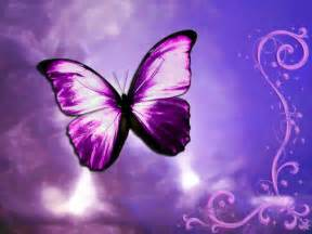 best black friday deals 2016 computer butterflies 1 2 jpg photo by hannia skelleton photobucket