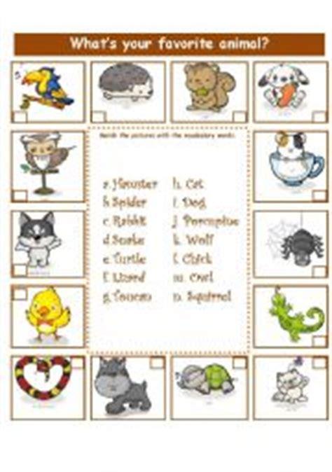 worksheet animals adjectives