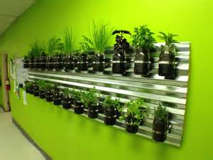 Houses interiors kitchens herbs indoor restaurant fresh spi imanada