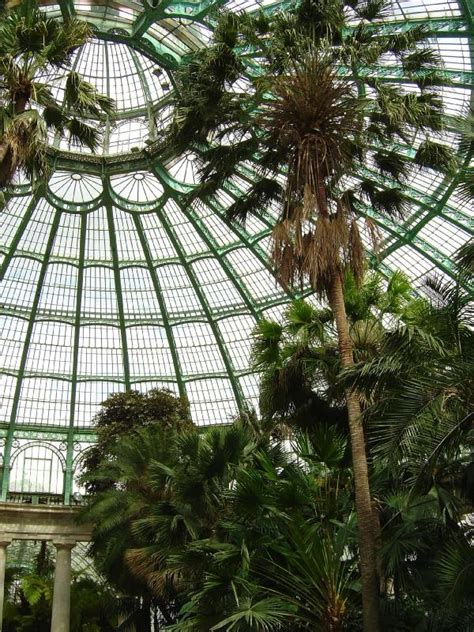 Beautiful Indoor Plants file laeken greenhouses inside dome jpg wikipedia