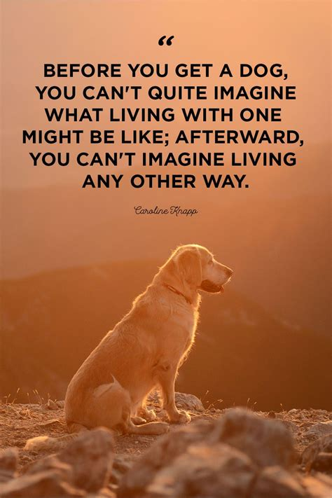 quotes  dogs     cry part